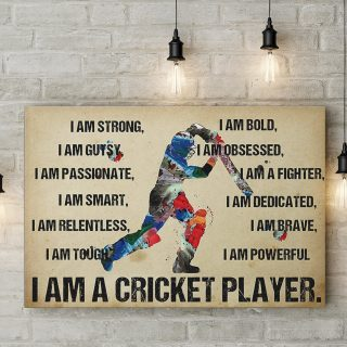 I Am A Cricket Player Canvas - 0.75 & 1.5 In Framed - Home Living - Wall Decor, Canvas Wall Art