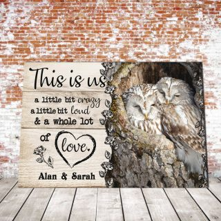 Personalized Owl Couple This is us Little bit Crazy Little bit Loud and a Whole lot of Love 0.75 In & 1.5 In Framed Canvas- Canvas Wall Art