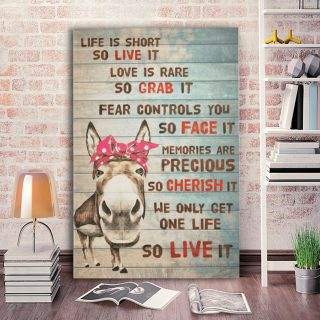 Donkey Life Is Short So Live It Canvas - 0.75 & 1.5 In Framed Canvas - Home Wall Decor, Wall Art