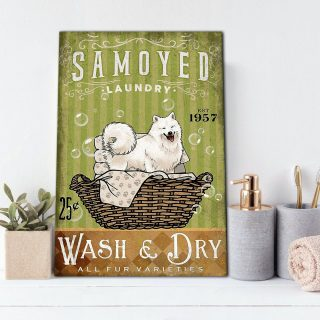Samoyed Puppy Laundry Room Canvas- 0.75 & 1.5 In Framed Canvas - Home Wall Decor, Wall Art