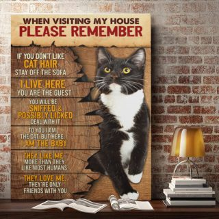When Visiting My House Please Remember Cat Rules 0.75 & 1.5 In Framed Canvas - Home Living, Wall Decor, Canvas Wall Art