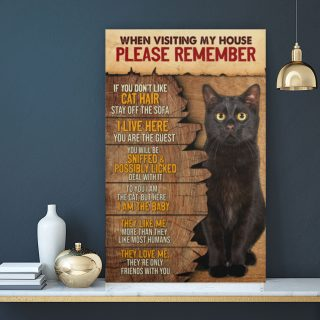 When Visiting My House Please Remember If You Don't Like Cat Hair 0.75 & 1.5 In Framed Canvas - Home Living -Wall Decor - Canvas Wall Art