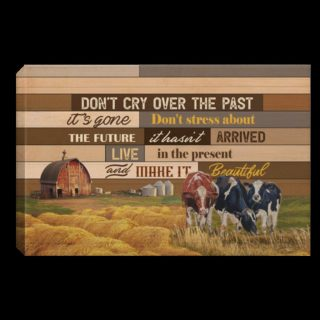 Don't Cry Over The Past It's Gone Don't Stress About The Future Farmhouse Decor Canvas 0.75 & 1.5 In Framed - Wall Decor, Canvas Wall Art