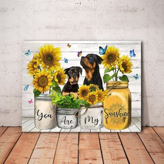 Rottweiler You Are My Sunshine Horizontal 0.75 and 1,5 Framed Canvas - Home Living- CanvasWall Decor