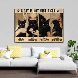 Girl Love Black Cat A Cat Is Not Just A Cat, He Is Sanity And Happiness 0.75 & 1.5 In Framed Canvas -Home Decor- Wall Decor, Canvas Wall Art